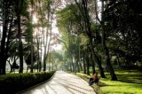 Carta Abierta – Parque de la Independencia – Parque Bicentenario