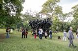 Un Salón con aire de Bienal